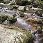 Landscape Of Becky Falls Waterfall In Dartmoor National Park Eng Poster by Matthew Gibson