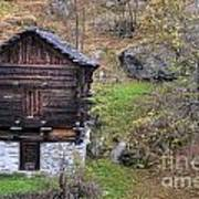 Old Rustic House Poster