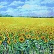 Sunflower Field Under Blue Skies Poster