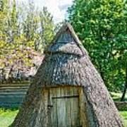 A Typical Ukrainian Antique Hut Poster