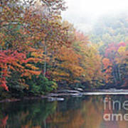Fall Color Williams River Poster by Thomas R Fletcher