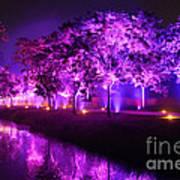 Illumina Light Show At Schloss Dyck Germany Poster by David Davies