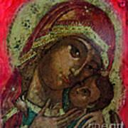 Mystical Rose Poster