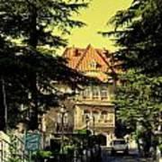 Shimla Poster