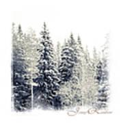 Winter Wonderland. Elegant Knickknacks From Jennyrainbow Poster by Jenny Rainbow