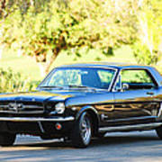 1965 Shelby Prototype Ford Mustang Poster