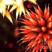 Fireworks Art Poster