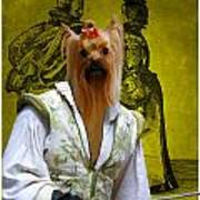 Yorkshire Terrier Art Canvas Print Poster
