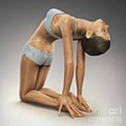 Yoga Camel Pose Poster