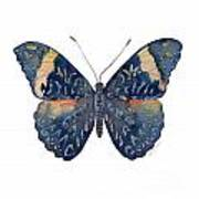 89 Red Cracker Butterfly Poster