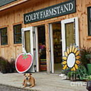 #923 D720 Colby Farm Stand Poster