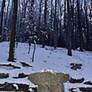 Stone Altar In The Woods Poster