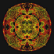 995 - Mandala In Earth Colours   Poster