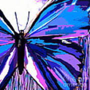 A Butterfly So Blue Poster