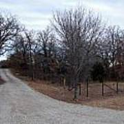 A Country Driveway Near The Brazos River Poster