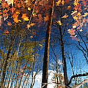 A Different Side Of Autumn Poster
