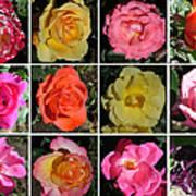 A Dozen Roses Poster