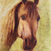 A Fine Horse Poster