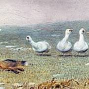 A Game Of Fox And Geese, 1868 Poster