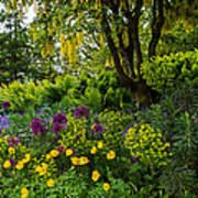 A Garden Of Color Poster