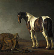A Horse With A Saddle Beside It Poster