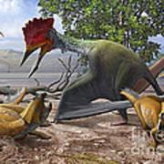 A Large Bakonydraco Pterosaur Attacking Poster by Sergey Krasovskiy