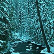 A Leaning Tree Over The Little Naches River Poster