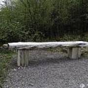 A Long Stone Section Over Wooden Stumps Forming A Rough Sitting Area Poster