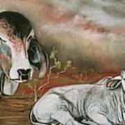 A Lot Of Bull Poster by Sandra Sengstock-Miller