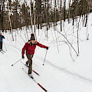 A Man And Woman Cross Country Skiing Poster