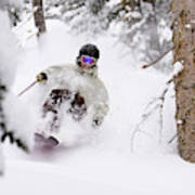 A Man Skiing Powder In The Trees Poster