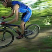 A Mountain Biker Races On A Trail Poster