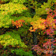 A Painting Adirondack Autumn Poster