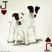 A Pair Of Jacks... Poster by Will Bullas