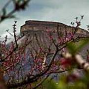 A Peak At Mt. Garfield Poster