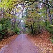 A Road In Autumn. Poster