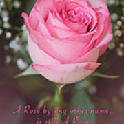 A Rose By Any Other Name Is Still A Rose Poster