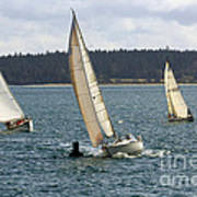 A Sailing Yacht Rounds A Buoy In A Close Sailing Race Poster