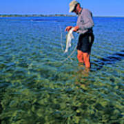 A Salt Water Fly Fisherman Catches Poster