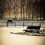 A Snow Covered Horse Farm Poster