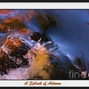 A Splash Of Autumn Poster
