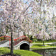 A Spring Walk Poster by Paul W Faust -  Impressions of Light