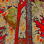 A Touch Of Autumn Abstract V Poster