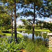 A Tranquil Pond At Walt Disney World Poster