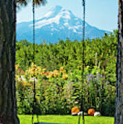 A Tree Swing Is Seen On A Summer Day Poster