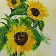 A Trio Of Sunflowers Poster