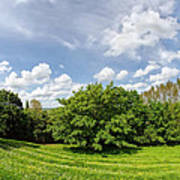 A View From Burrow Mump Poster