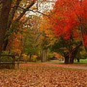 A Walk In Autumn - Holmdel Park Poster