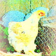 A Wet Hen In Its Own Little Paradise  Poster