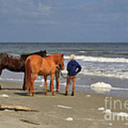 A Windy Day At Hunting Island Beach Poster